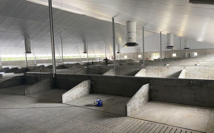 Dragende zeugenboxen beton